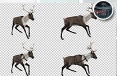 6段圣诞节驯鹿循环视频素材