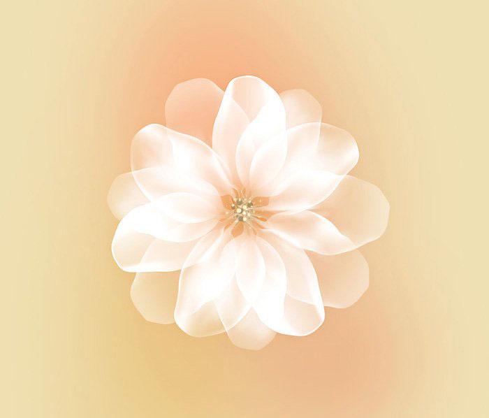 PS制作梦幻的白色花朵