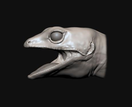 ZBrush生物模型雕刻教程:豹纹壁虎